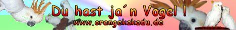 Private Webseite über die Haltung und Zucht von Orangehaubenkakadus. Volierenbau, Zucht, Giftpflanzen, Kakadulexikon, Bildergalrie, Ernährung, Loro Parque Bis bald Mario